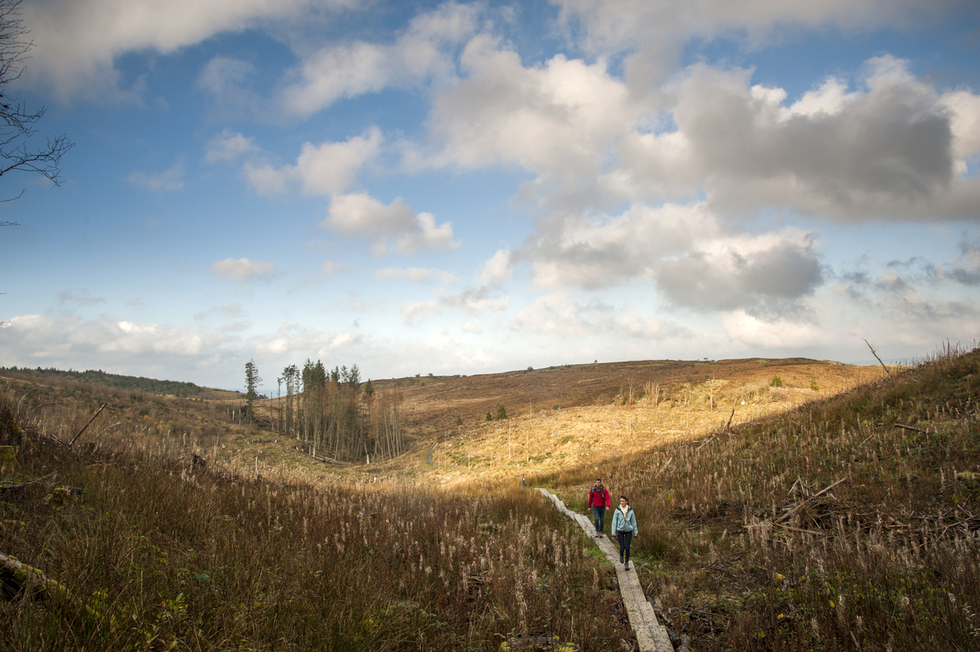 The Best Hikes in Ireland: The Burren, County Clare