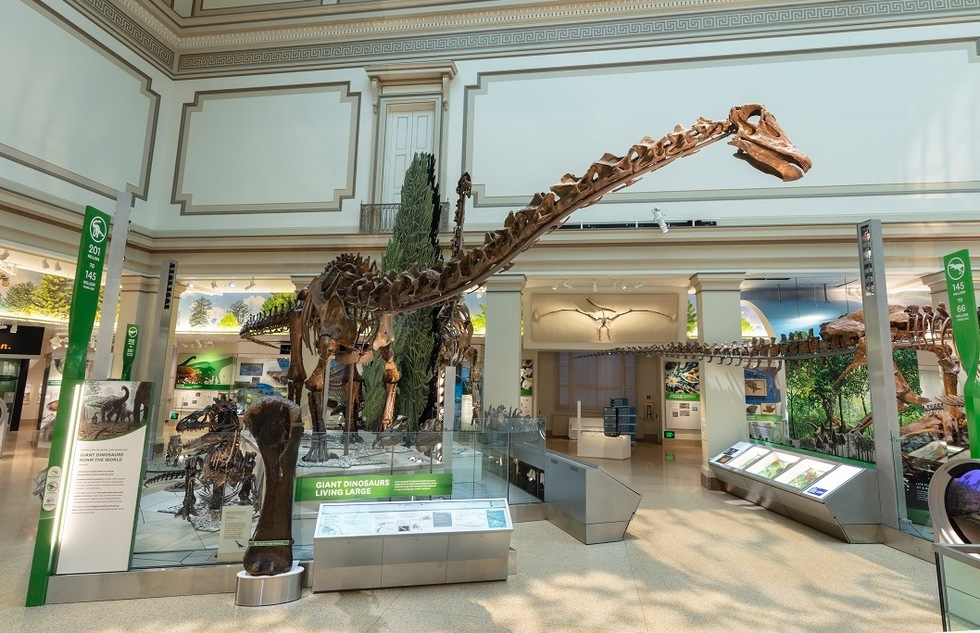 Best Dinosaur Museums and Attractions for Kids and Families: Smithsonian National Museum of Natural History, Washington, D.C.
