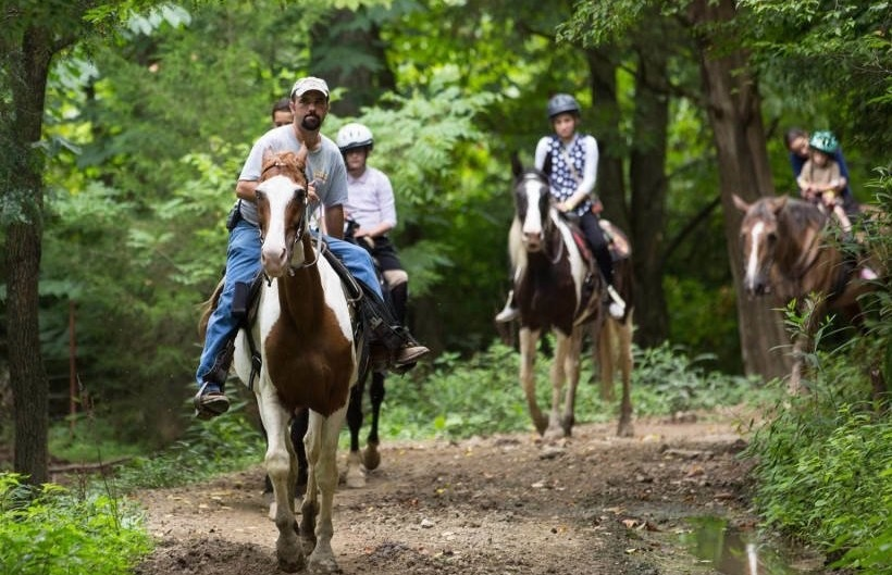 Horseback riding in the Great Smoky Mountains