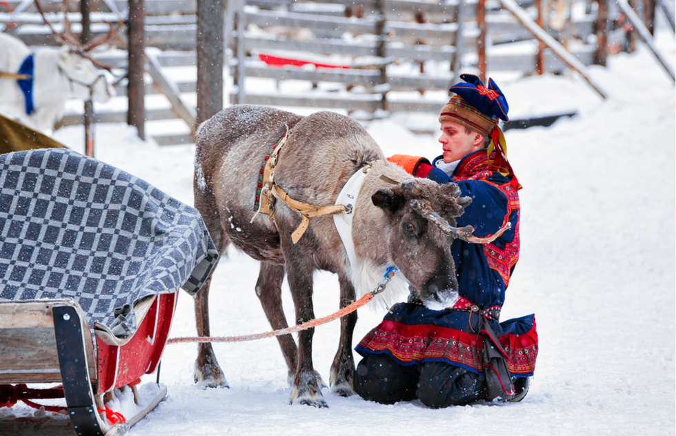 Reindeer carriage ride in Rovaniemi, Finland