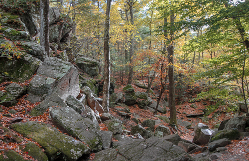 Purgatory Chasm State Reservation in Massachusetts