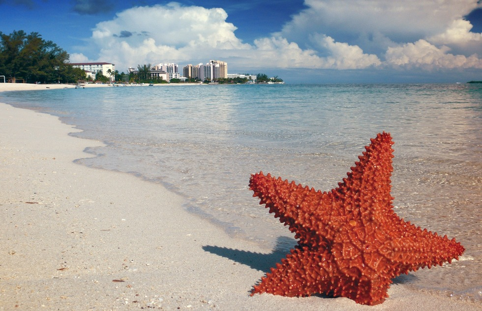 Take Your Next Beach Vacation in the Bahamas: It's the Right Thing to Do | Frommer's