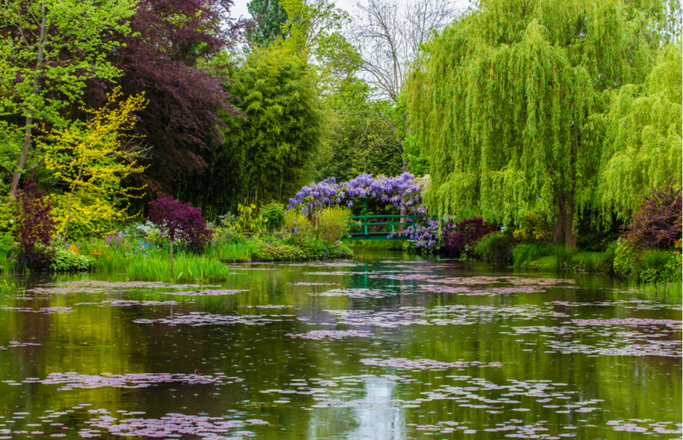 Monet's water garden in Giverny, France
