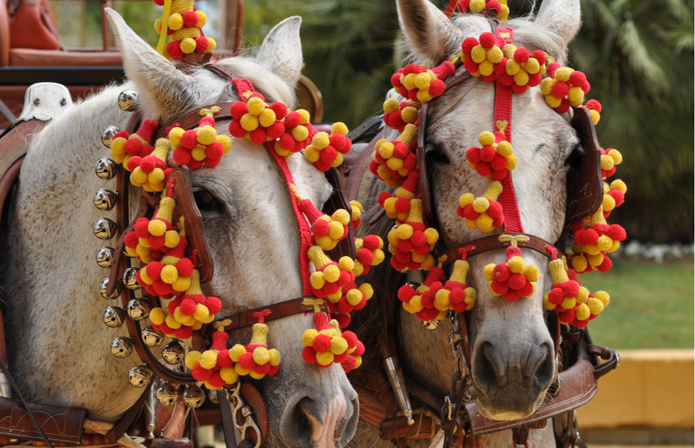 Horses at the Feria del Caballo in Jerez de la Frontera, Spain