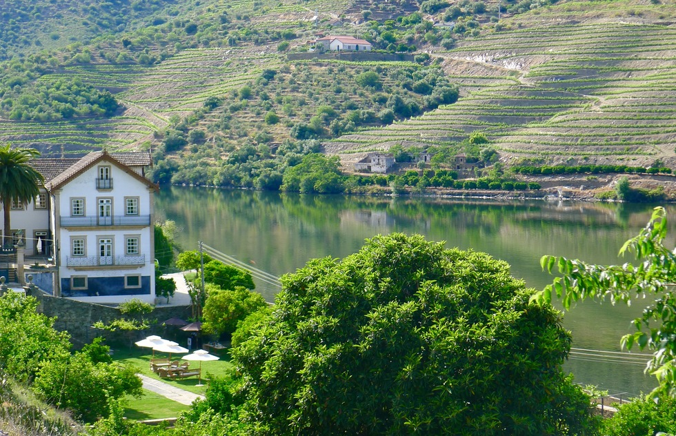 Daytrips and Side Trips near Porto Portugal: The Douro Valley
