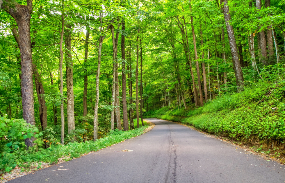 Best national park scenic drives: Roaring Fork Motor Nature Trail at Great Smoky Mountains National Park in Tennessee