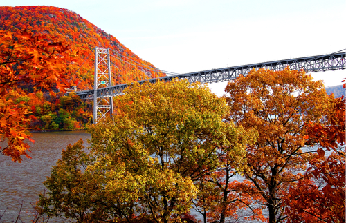 How to Track Fall Foliage in New York State | Frommer's