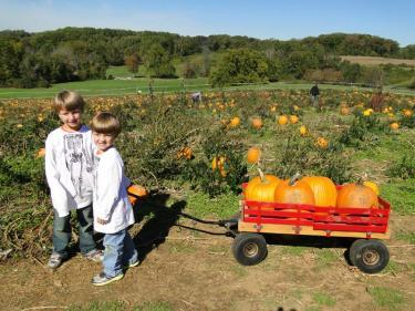 In the pumpkin patch at Ramseys Farm in Delaware