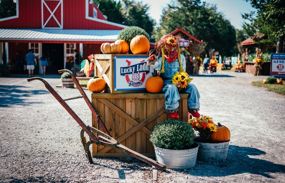 A welcoming scarecrow at the Lucky Ladd Farms in Tennessee