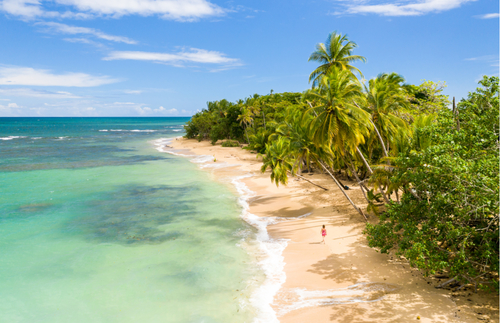 Costa Rica Fully Reopens to Tourism—No Test, No Quarantine Required | Frommer's