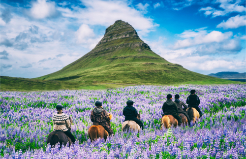 Iceland To Welcome Tourists Who Recovered from Covid-19 or Got the Vaccine | Frommer's
