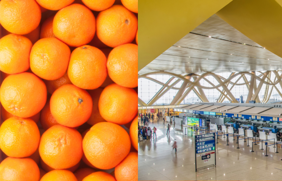 Four Men Eat Crate of Oranges at Chinese Airport to Avoid Excess Baggage Fee | Frommer's