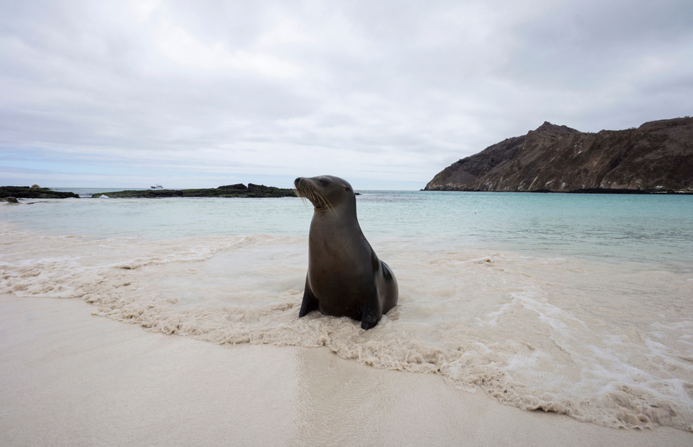 Best islands to visit in the Galapagos Islands