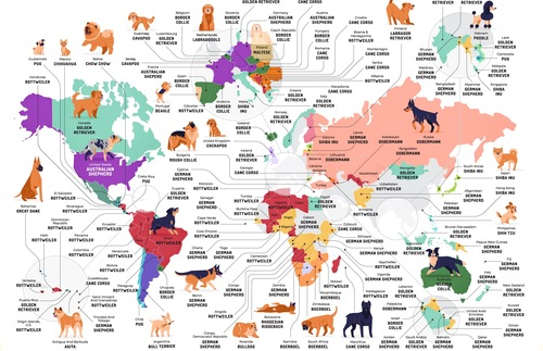 The Most Popular Dog Breeds in the World—Mapped | Frommer's