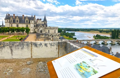 In the Loire Valley, New Visions of Gardens and the Life of Leonardo da Vinci | Frommer's