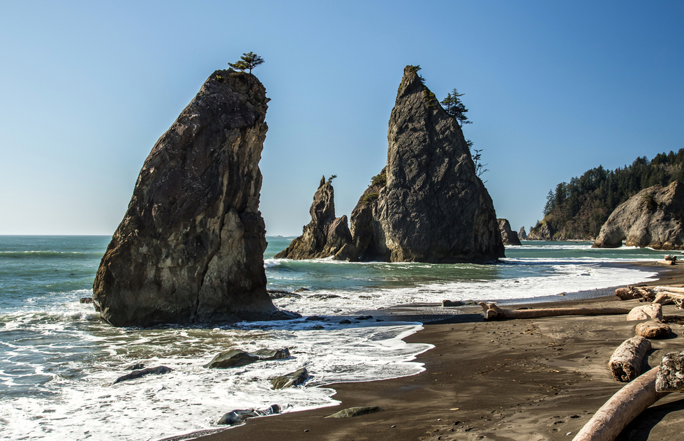 The wild coastline of Olympic National Park.