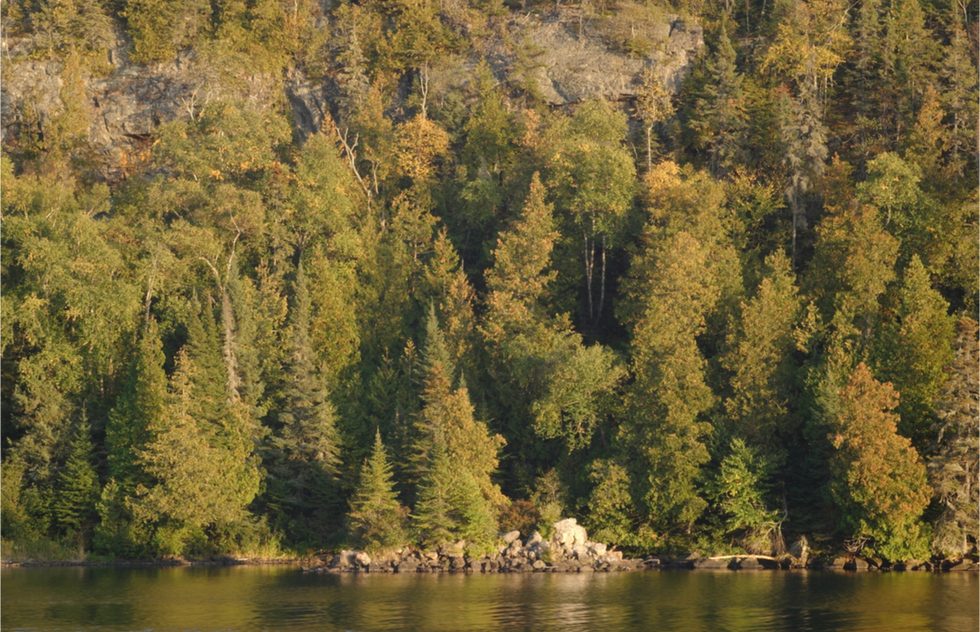 A view of the densely forested shoreline of Isle Royale in Michigan