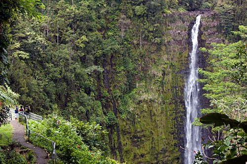 Akaka Falls is easily accessible by a step trail that runs along its right shoulder down into the gorge.