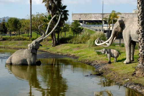 La Brea Tar Pits at the Page Museum.