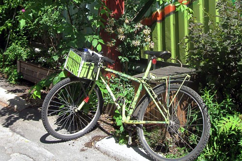 A bike parked along one of Montreal's green alleyways.