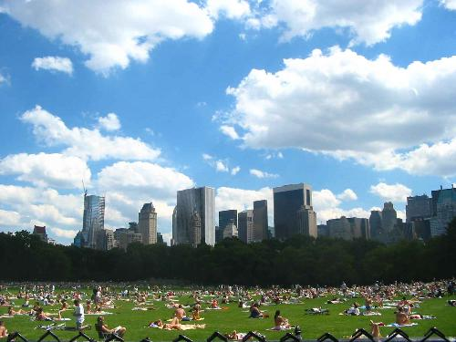 Central Park in Summer