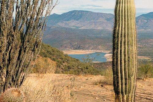 A river view from Tonto National Forest.