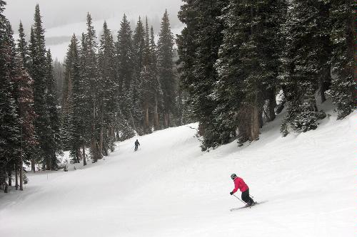 Skiing the slopes at the Alta Ski Area in Little Cottonwood Canyon, Utah.