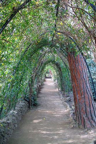 Some of the nooks and crannies of Parc Güell take on a fairytale quality.