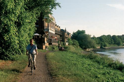 Cyclist on the tow path by the River Thames in Barnes, London. Ye White Hart pub is in the background.