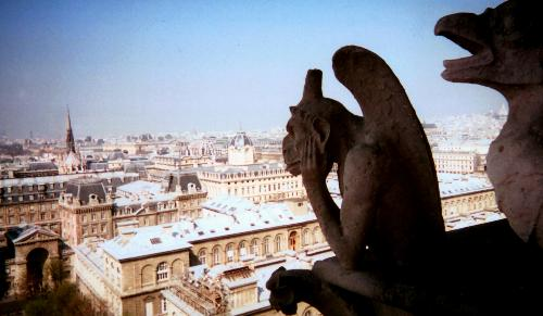 A view from the Cathedral of Notre Dame