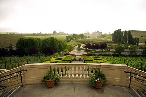 Domaine Carneros, Napa Valley. Photo: Rocco Ceselin
