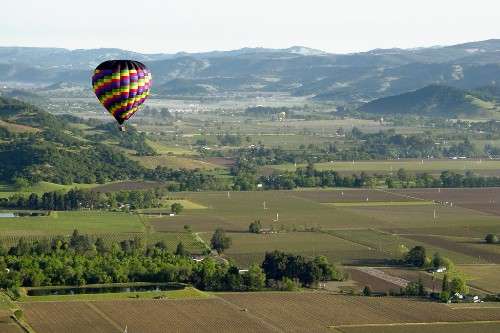 Balloons over the vineyards of Napa.