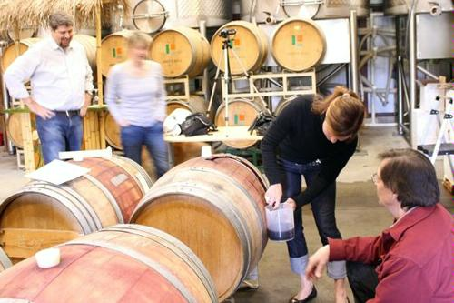 Barrel Blending Day Camps at Judd's Hill Winery in Napa Valley, California.