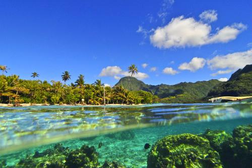 The view of Motu Ahi from the water in Moorea, French Polynesia.