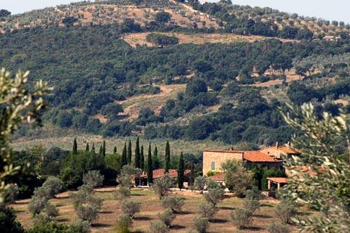 Capezzana winery estate in Tuscany, Italy. Courtesy Central Holidays