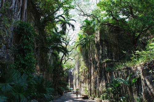 Narrow path to the Queen's Staircase in Nassau