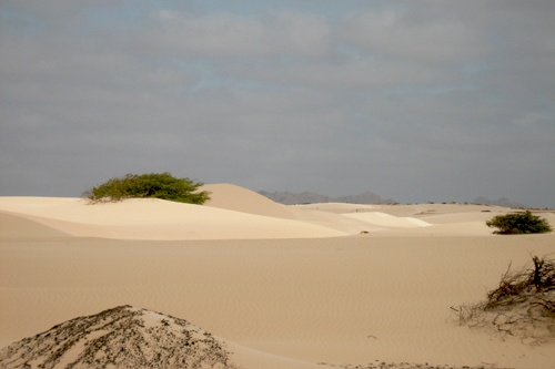 The sand desert Viana on the island of Boa Vista, Cape Verde, is surrounded by rock desert.