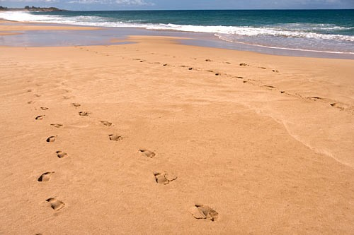 Three miles of smooth sand on the pristine Pacific shore make Papohaku Beach a perfect location for a stroll.
