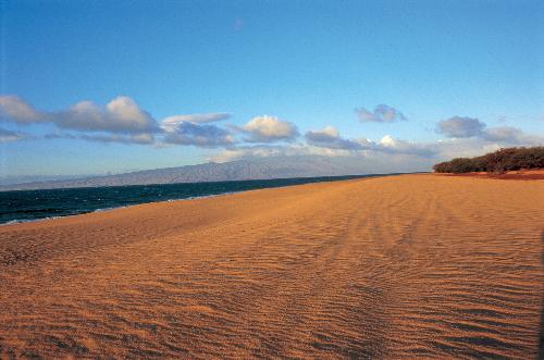Polihua Beach nearly takes on a desert quality.