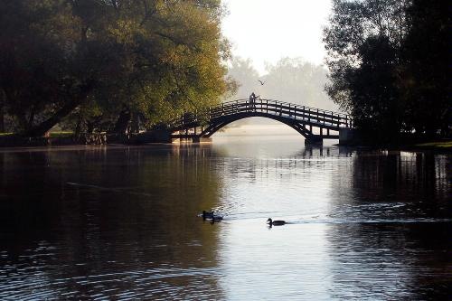 Tom Patterson island in morning light, in Stratford, Ontario.