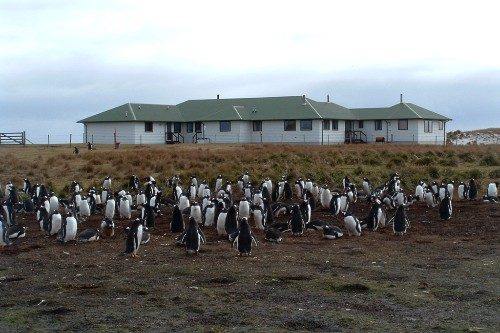 Sea Lion Lodge on Sea Lion Island, Falkland Islands.