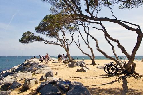 Beachgoers And Cyclists At Balboa Beach In Orange County California