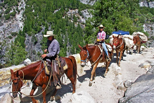 Saddle Tip on the John Muir Trail. Photo courtesy DNC Parks & Resorts at Yosemite, Inc.