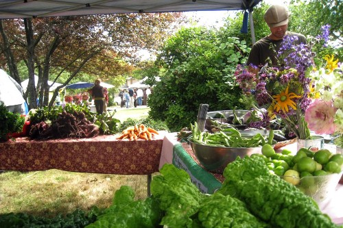 The Salt Spring Centre of Yoga's farm stand at the Tuesday Farmer's Market.
