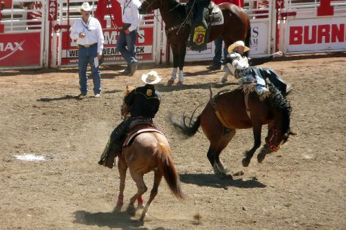 The Calgary Stampede Rodeo in Calgary, Canada.