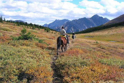 Trail riding in the Bow Valley in the Canadian Rockies.