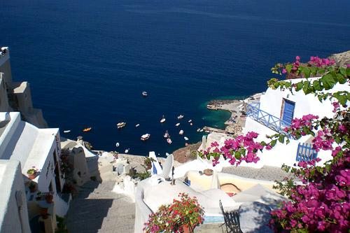 Overlooking a cove in Santorini with bougainvillea in bloom