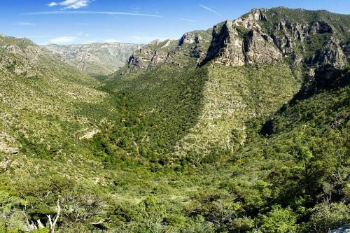 McKittrick Canyon in Guadalupe Mountains National Park in Texas.