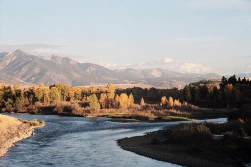 Fall colors along the Snake River in Jackson Hole, Wyoming.