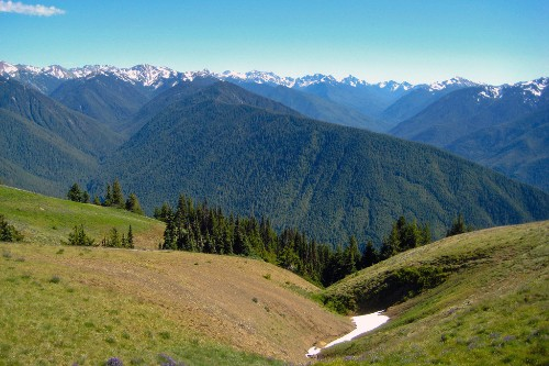 "Hurricane Ridge, Olympic National Park. Photo by <a href=""http://www.flickr.com/photos/yugen/2813162204/"" target=""_blank"">yugenro/Flickr.com</a>."